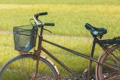 Fahrrad vor einem Reisfeld in Vietnam Stockfotos
