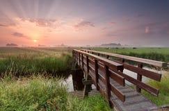 Fahrradbrücke über Fluss bei Sonnenaufgang Lizenzfreies Stockbild