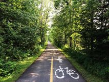 Fahrradfahrdurchlauf im Wald Lizenzfreie Stockbilder