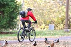 Fahrradfahrt Lizenzfreies Stockfoto