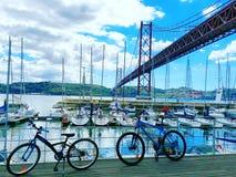 Fahrradfahrt Stockbilder