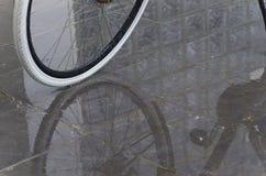 Fahrradfelge Stockbilder