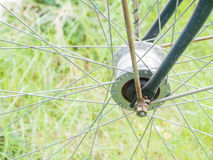 Fahrradfelge im grünen Hintergrund Stockfotografie