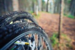 Fahrradfelge im Waldschmutz Stockbild