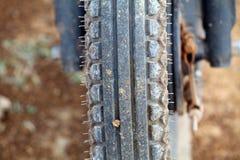 Fahrradreifen im Abschluss oben Stockfotografie