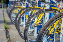 Fahrradreifen, Parkstadt, die Fahrräder teilt Stockfotografie