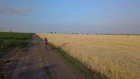 Fahrradreise auf den Gebieten stock video