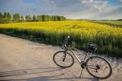 Fahrradreiten Lizenzfreies Stockfoto