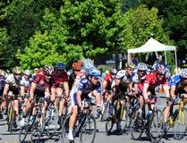 Fahrradrennläufer Lizenzfreies Stockfoto