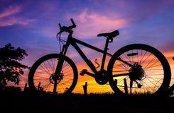 Fahrradschattenbild auf einem Sonnenuntergang Stockfotografie