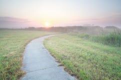 Fahrradstraße auf niederländischem Ackerland bei Sonnenaufgang Lizenzfreies Stockbild