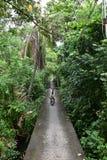 Fahrradweg im Knall Kachao stockbild