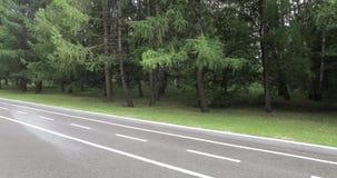 Fahrradweg im Park stock video
