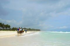 Fahrt auf Pferderuecken auf dem Strand Lizenzfreies Stockbild