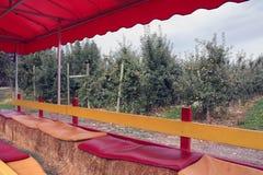 Fahrt im Apfelobstgarten Stockfotos