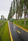Fahrt im cycleway lizenzfreie stockfotos