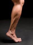 Fahrwerkbein des weiblichen Athleten Stockfotos