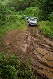 Fahrzeuge auf einem schlammigen Schotterweg durch den Dschungel in Tahaa, Tahit Stockbild