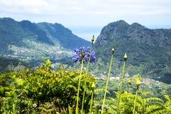 Faial和Penha de A?  guia或老鹰岩石,马德拉岛,葡萄牙看法  免版税库存照片