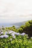 Faial, de Azoren Royalty-vrije Stock Afbeeldingen