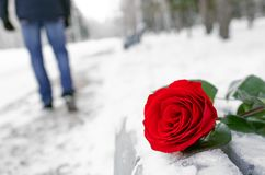 Failed date. Red rose flower laying on the snow covered bench in a winter park and walking away man silhouette. Failed date or broken heart concept royalty free stock photos