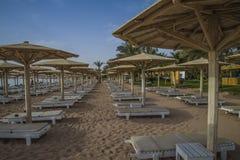 Fainéants vides du soleil sur la plage Photographie stock libre de droits