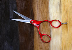 Fair, brown, black and blond hair and scissors Stock Photography