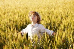 Fair-haired boy Royalty Free Stock Images