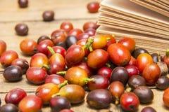 Fair Trade Abstract Royalty Free Stock Image