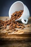 Fair trade coffee beans. White cup with fair-trade coffee beans on wooden desk royalty free stock photography