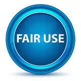 Fair Use Eyeball Blue Round Button. Fair Use Isolated on Eyeball Blue Round Button stock illustration