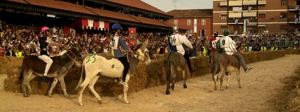 Fair and white truffle of Alba donkey race. Stock Photography