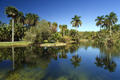 Fairchild Botanic Gardens Royalty Free Stock Photo