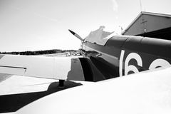 Fairchild PT-19 B&W Fotografia Stock