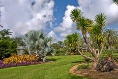 Fairchild tropical botanic garden royalty free stock photo