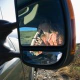 Faire de femme composent dans le véhicule. Photo stock