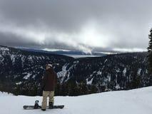 Faire du surf des neiges avec les piaulements Photos stock
