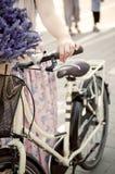 Faire du vélo d'été photographie stock libre de droits