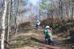 Faire du vélo dans les les bois photo libre de droits