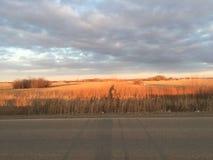 Faire du vélo de coucher du soleil de prairie ! photos libres de droits