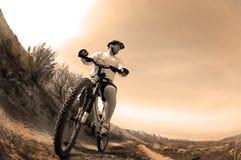 Faire du vélo de montagne Photographie stock libre de droits