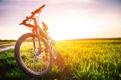 Faire du vélo de montagne Image libre de droits