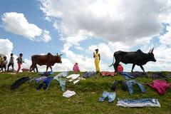 Faire la blanchisserie au Madagascar Images stock