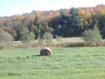 Faire les foins dans les champs, landskape Stock Photos