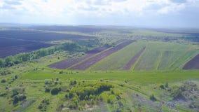 Faire pousser le champ agricole avant de semer Clip Vue supérieure du champ tracé avant ensemencement clips vidéos