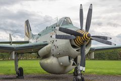 Fairey gannet στοκ εικόνα με δικαίωμα ελεύθερης χρήσης