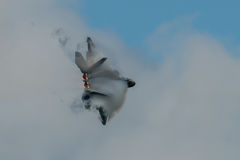 FAIRFORD, REINO UNIDO - 10 DE JULIO: El avión del rapaz de F-22A participa en aire tatuaje salón aeronáutico evento el 10 de juli Fotografía de archivo