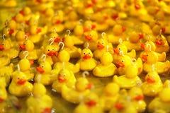 Fairground haczyk gumowa kaczki szansy gra Obraz Stock