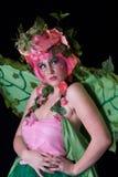 fairie άνοιξη Στοκ Εικόνες