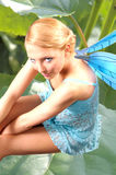 Fairies 10 stock photo